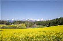 信州黄色づくしの旅