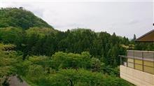 宮城の山中でのんびりしとりまっせ❗