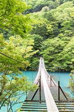 浜松のうなぎと寸又峡釣り橋