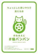 今更ながら・・・猫バンバン!!