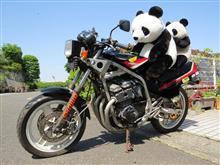 天気が良いのでバイクの虫干し…