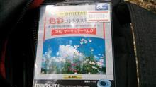 PLフィルター撮影テスト(愛知県民の森)
