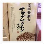 焼津ぷちオプミ