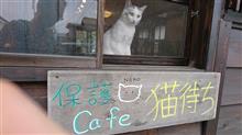 猫カフェの話