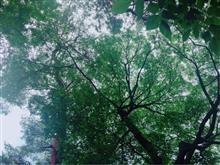 朝食はおぉみや公園で