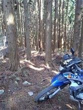 【バイク】お山遊び_HP0の刑