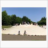 国営昭和記念公園に行ってきた ...