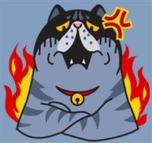 拡散希望  埼玉県でスカイラインが盗難されました