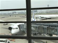 羽田空港です。