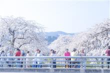 陽気な春の訪れ。
