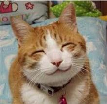 「  笑  」 ~  ver.91