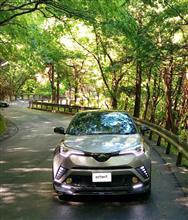 新緑のドライブ。ノープランで箱根に。。。