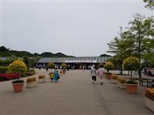 花フェスタ記念公園へ〜