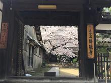 桜満開の尾道・鞆の浦ツアー2018~その9