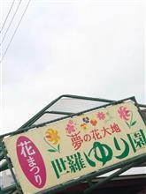 ちょこっとドライブ〰︎ヽ(´▽`)/