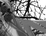 Requiem …序章-1. 「葬列」……📓