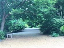 つくば牡丹園にいってみました