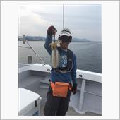 博多でボートエギング
