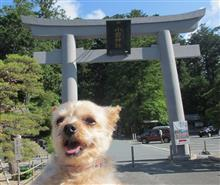 6月の小国神社