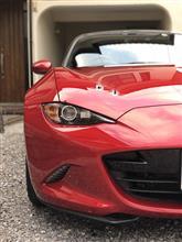 赤い車は鳥糞攻撃を受けやすい説