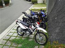 【YAMAHA_XTZ125】納車。
