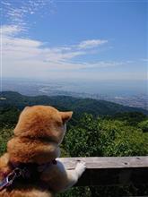 【マメ柴LEN吉の冒険!】さらば門司港(^^)/   そして神戸、六甲山へ !?
