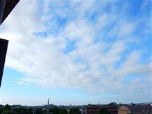 6月19日 穏やかな天気の火曜日、おはよ~♪