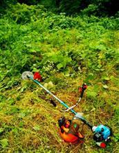 草刈りシーズンで・・ とか