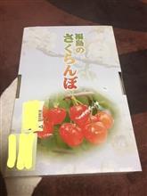 福島県のさくらんぼ「佐藤錦」届きました。