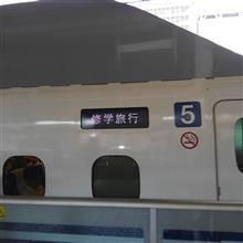 新幹線より小さな幸せ報告(笑