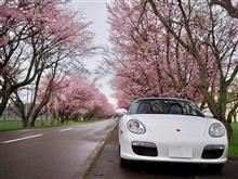 ボクスターで行く、ゴールデンウィークの北海道桜旅