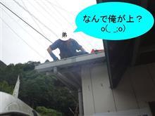 雨どい大作戦♪ ε=ε=(ノ≧∇≦)ノキャー