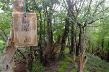 熊鷹山~十二山~宝生山~氷室山~根本山 縦走 2018.7.8 PS250