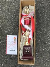 優勝 第 16 回 本庄 4st6時間耐久カートレース