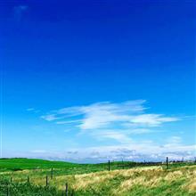 土田牧場と北欧の森公園
