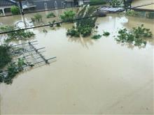2018年7月豪雨災害、まずは募金しましょうの記事。是非リンクを拡散下さいm(__)m