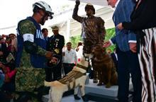 メキシコの災害救助犬、銅像になる
