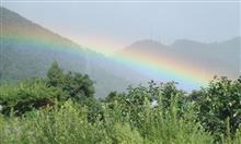 希望の虹であってほしい~!