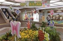 ショッピング・モールにカブト虫 @ さんちか昆虫の森展