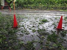 台風一過の軽井沢は、、、