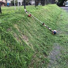 涼しくなってから草刈り
