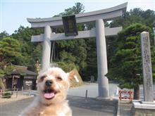 8月の小国神社