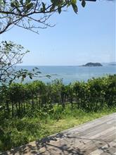 和歌山に行ってきました