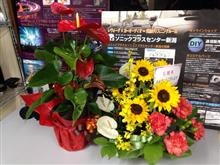 【感謝】ありがとうございます。綺麗なお花とS208 最高の記念日