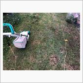 庭の草刈り