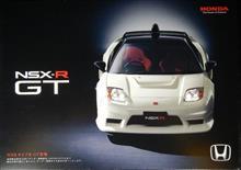 NSX  GT