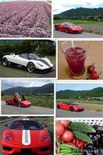 スーパーカー撮影、早くしたいな(^ ^)