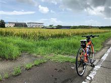 近場をサイクリング