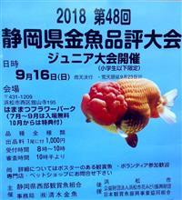 (フラパ) 金魚の品評会