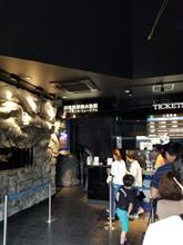 深海水族館〜久能山東照宮へ。